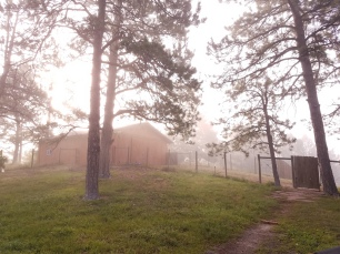 Barn Foggy Morning